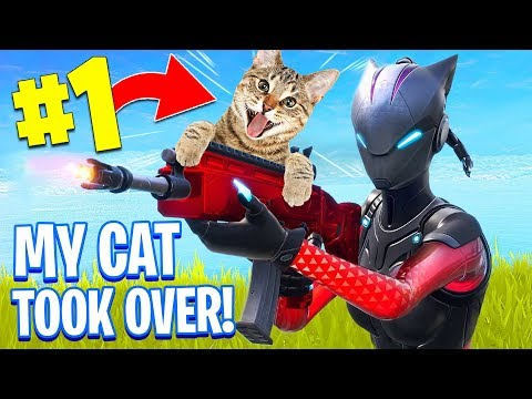 My Cat Won A Game Of Fortnite..