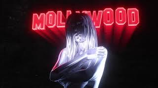 STEIN27 – Mollywood