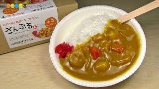 DIY Replica Food Kit - Curry and Rice 食品サンプルキットさんぷるん カレーライス作り thumbnail