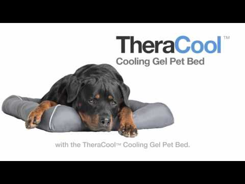 TheraCool - Cooling Gel Pet Bed