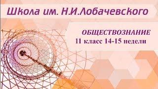 Обществознание 11 класс 14-15 недели Право