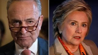 Schumer: Democrats to blame for election loss