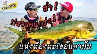 ตามล่าปลาสุดแกร่ง-แห่งท้องทะเลอันดามัน-หัวครัวทัวร์ริ่ง-ep-41