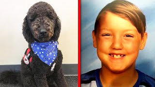 missing-idaho-kid-s-dog-was-given-up-just-before-he-vanished