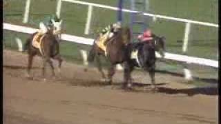 Top 10 Breeders Cup Moments