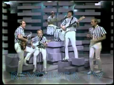 The Beach Boys    Barbara Ann