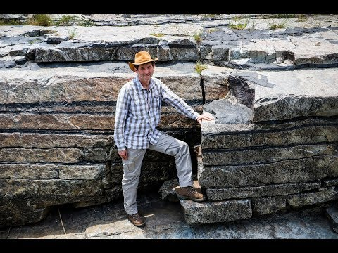 Study Unlocks Secrets Of South Africa's National Treasures