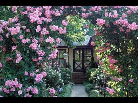 I Come to the Garden Alone - acapella