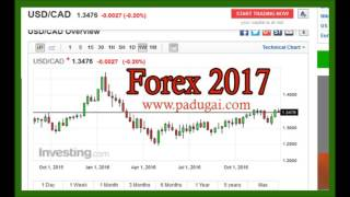 Forex 2017 prediction USD/CAD