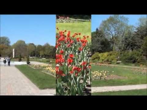 Video Tour Jackson Park & Queen Elizabeth II Sunken Garden's