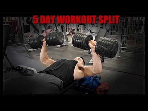 5 Day Split Routine   Upper Lower Push Pull Legs HYBRID