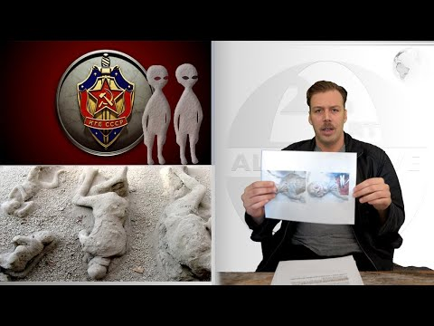 "CIA Claims Peoplpe Were ""TURNED INTO STONE"" By Aliens After UFO Encounter - Stunning Admission."