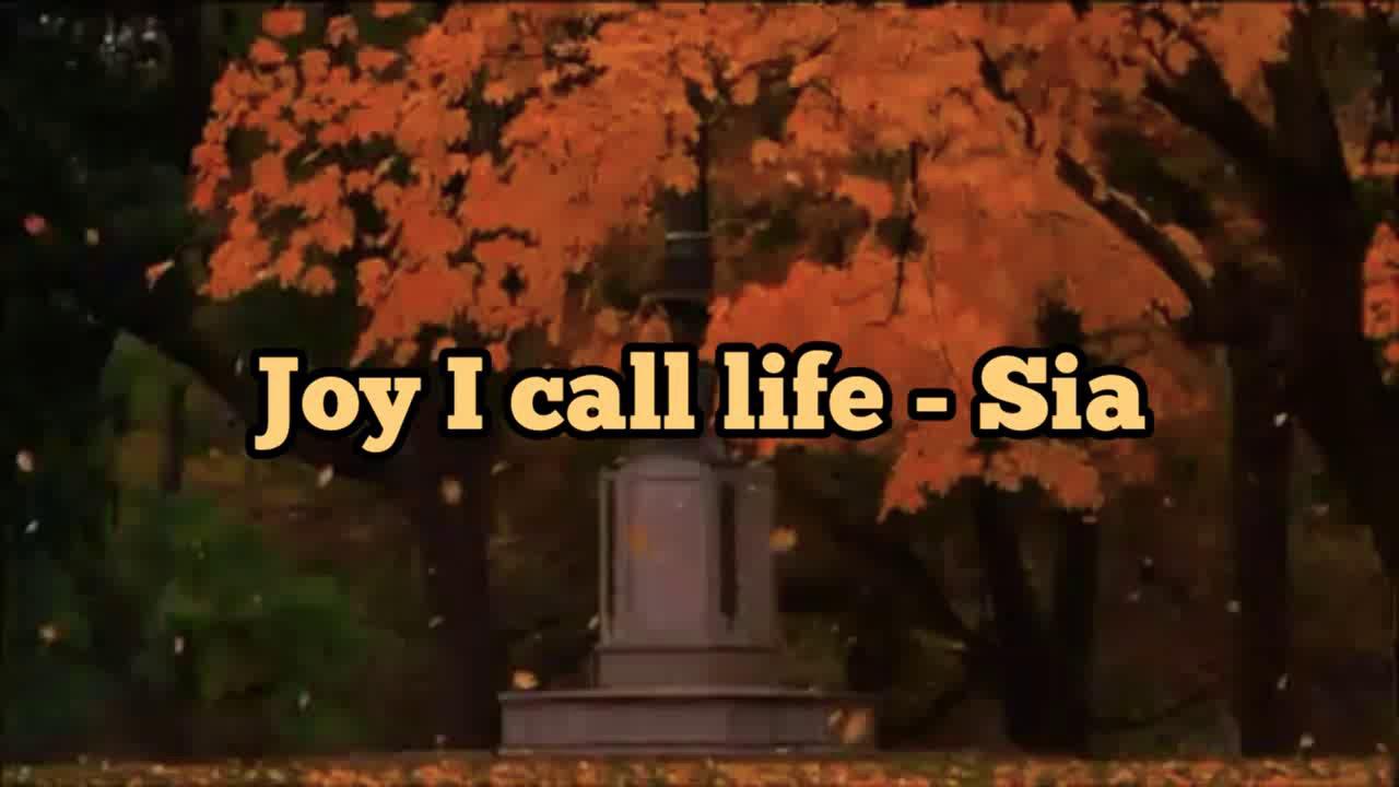 Download Sia - Joy I Call Life (Legenda/Tradução-PT)