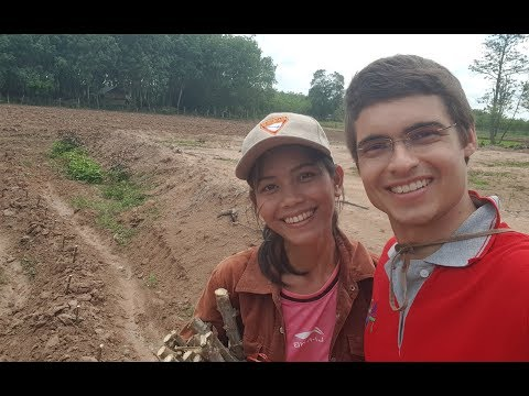 Farang (Foreigner) Works on Thai Farm