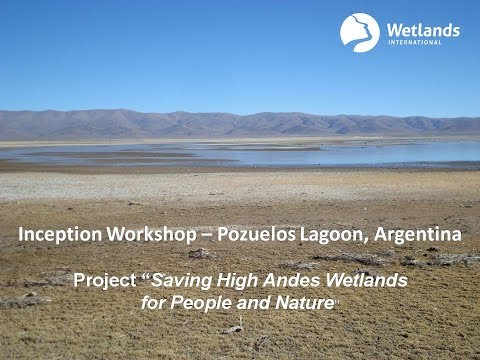 Saving High Andes Wetlands for People and Nature - Pozuelos Lagoon, Argentina