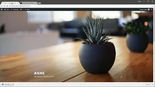 Ashe Pro Wordpress Blog -Download, Installation & Demo Import (old)