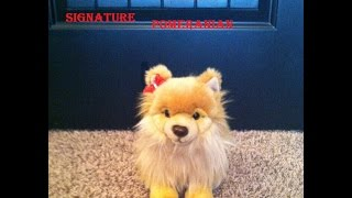 Opening The Webkinz Signature Pomeranian!