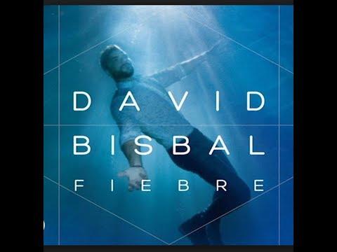 David Bisbal-Fiebre (Remix) DJ NIKO
