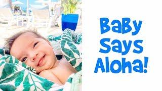 Baby Says Aloha! - Ballinger Family Goes to Hawaii Day 3