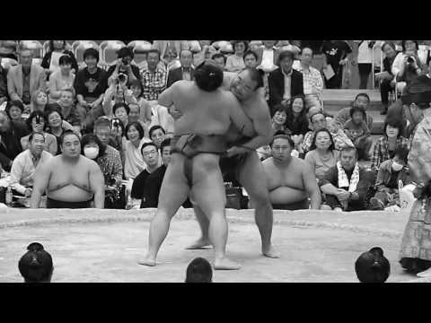 Sexy sumo