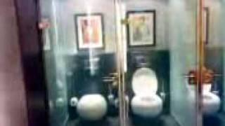 видео Стеклянные двери в ванной и кухне