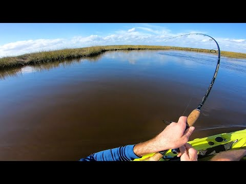 Adventuring Deep Up The Creek For Jacksonville Redfish
