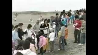 遠州灘海岸の環境を守るために行われた清掃活動の様子(平成18年5月)