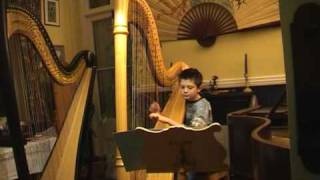 Take Five played on the harp