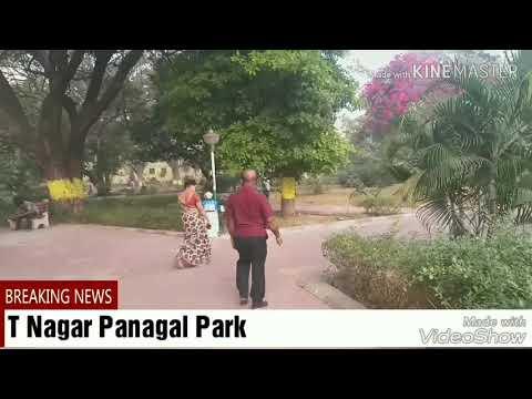 T Nagar Panagal Park review