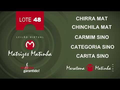 LOTE 48  Matrizes Matinha 2019