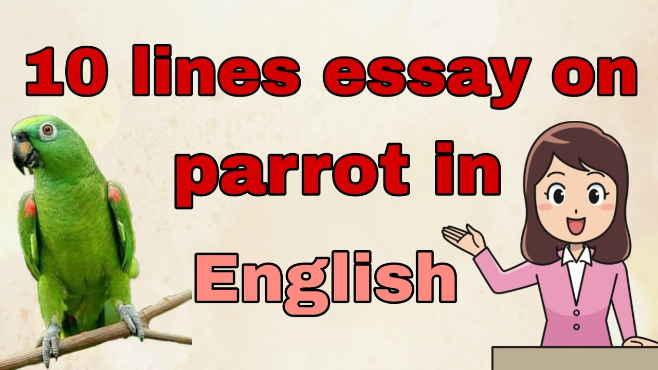 10 Lines Essay On Parrot In English Parrot 2019 Youtube