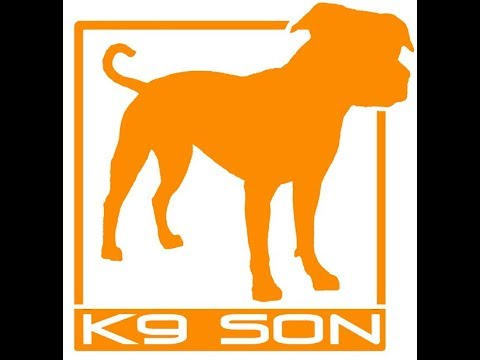 Dog Play Workshop 9 23 17