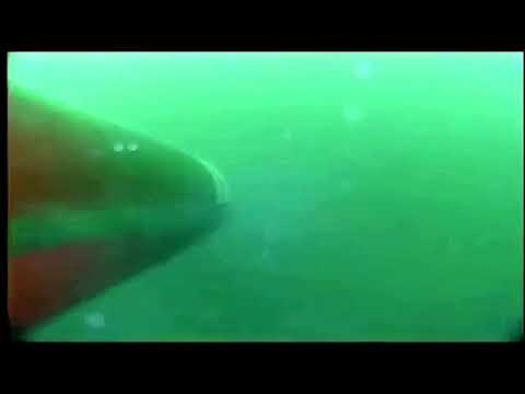 Pakistan conducts Submarine launched cruise missile test. Babur 3 slcm