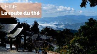 Chine, sur la route du thé