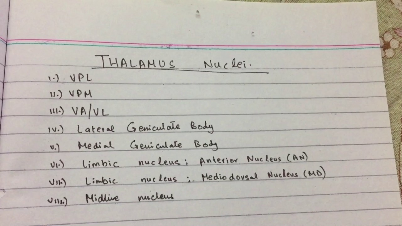 Thalamus Nuclei | Neuroscience | USMLE STEP 1 | Made Ridiculously ...