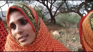 Eritrean Bilen Music-