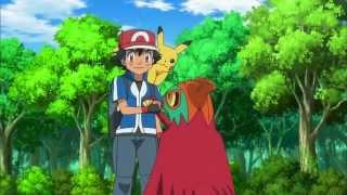 Pokemon XY – Hawlucha. Oglądaj w Disney XD!
