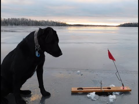 BWCA Winter Camping and Spearing