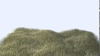 Lightwave Grass Fiber FX Test