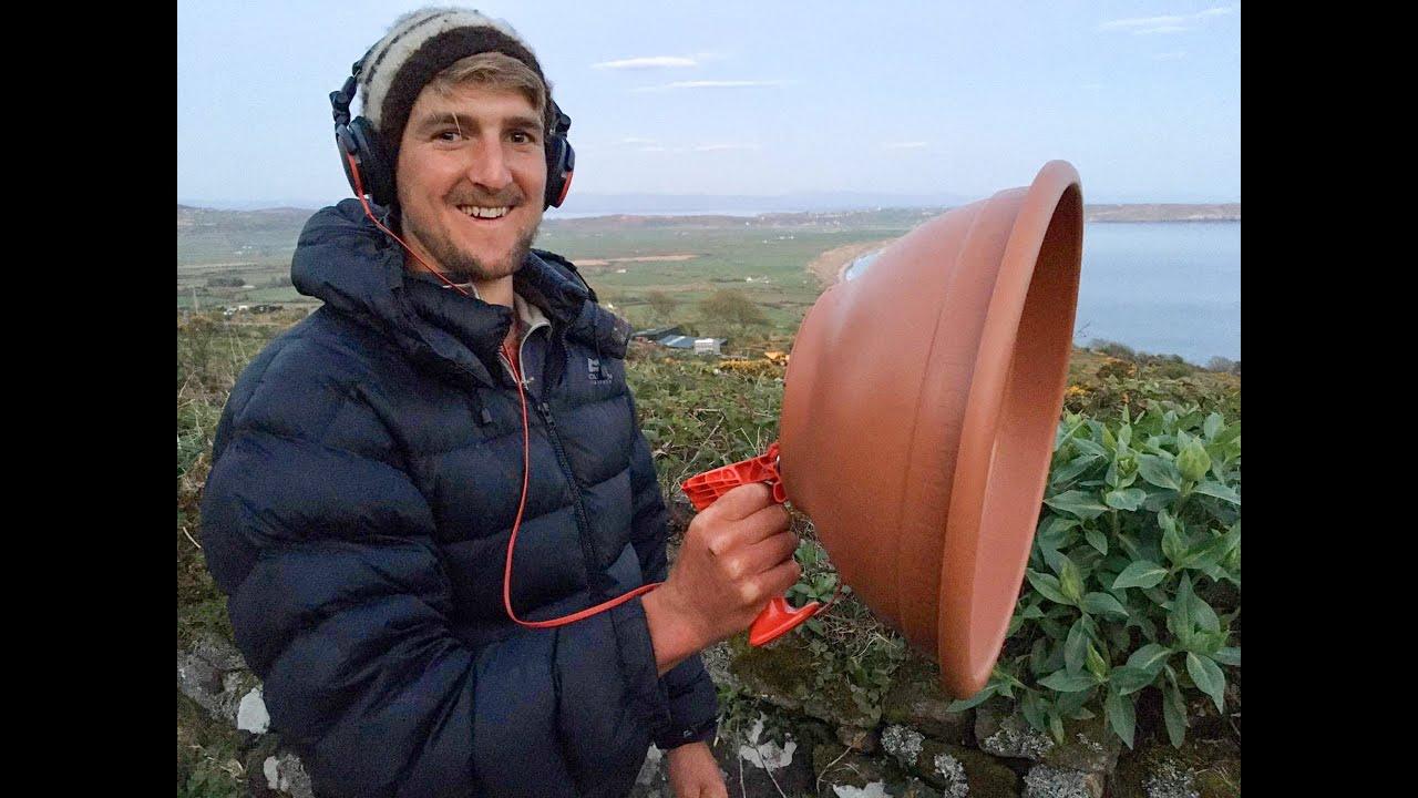 Recognising & Recording Birdsong