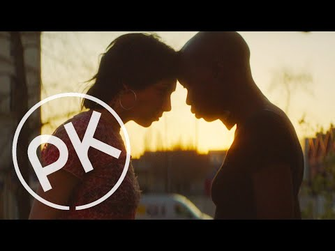Nto - Invisible   Paul Kalkbrenner Remix