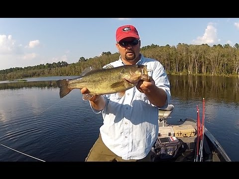 fishing for beginners how to hold a bass youtube. Black Bedroom Furniture Sets. Home Design Ideas