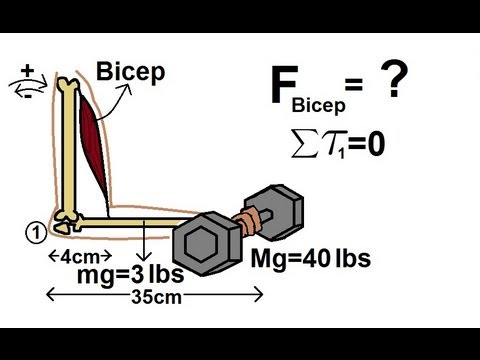 physics---mechanics:-torque-(5-of-7)-the-bicep