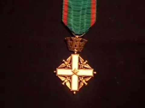Medaglia dell ordine al merito della repubblica italiana for Senatori della repubblica italiana nomi