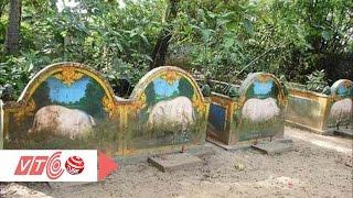 Nghĩa địa heo 5 móng ở Sóc Trăng | VTC