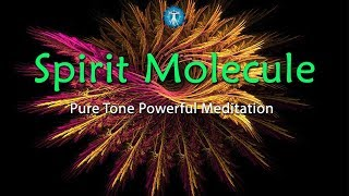 "WARNING Powerful ""Spirit Molecule"" Pure Tone For Connection to the Universe"
