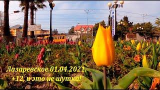 1 апреля Воздух 12 ЛАЗАРЕВСКОЕ СЕГОДНЯ СОЧИ