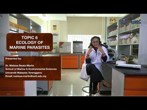 UMTMOOC -  Ecology of Marine Parasites
