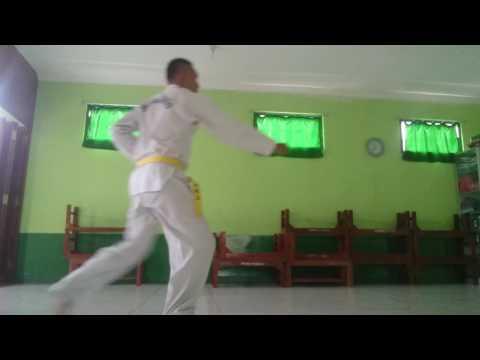 Basic 1-3 Taekwondo