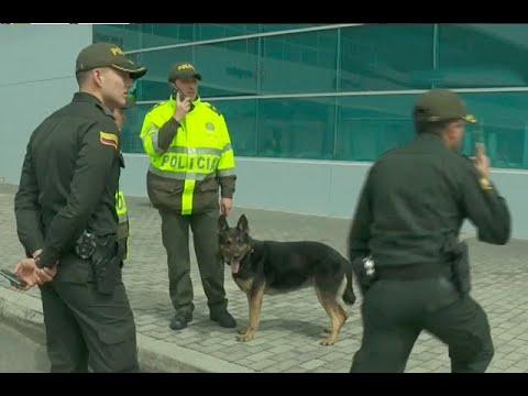 Alias 'Otoniel' ofrece recompensa para matar perra antinarcóticos | Noticias Caracol